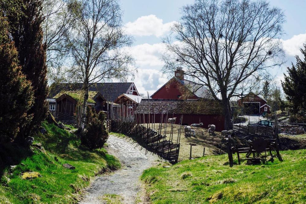 Berg gård 66